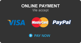 We Accept VISA | MASTERCARD | PAYPAL. Pay Now Here